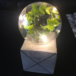 Decorative Faux Plant with LED Fairy Lights